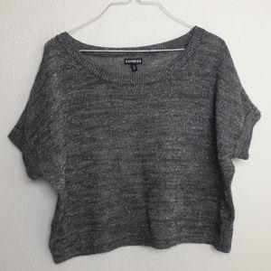 Express XS Knity Sweater Metallic Silver Flecks